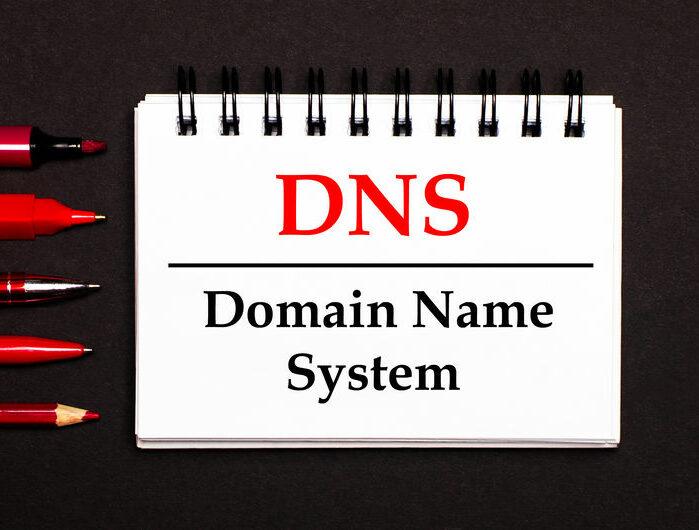 Secondary DNS (Backup DNS)